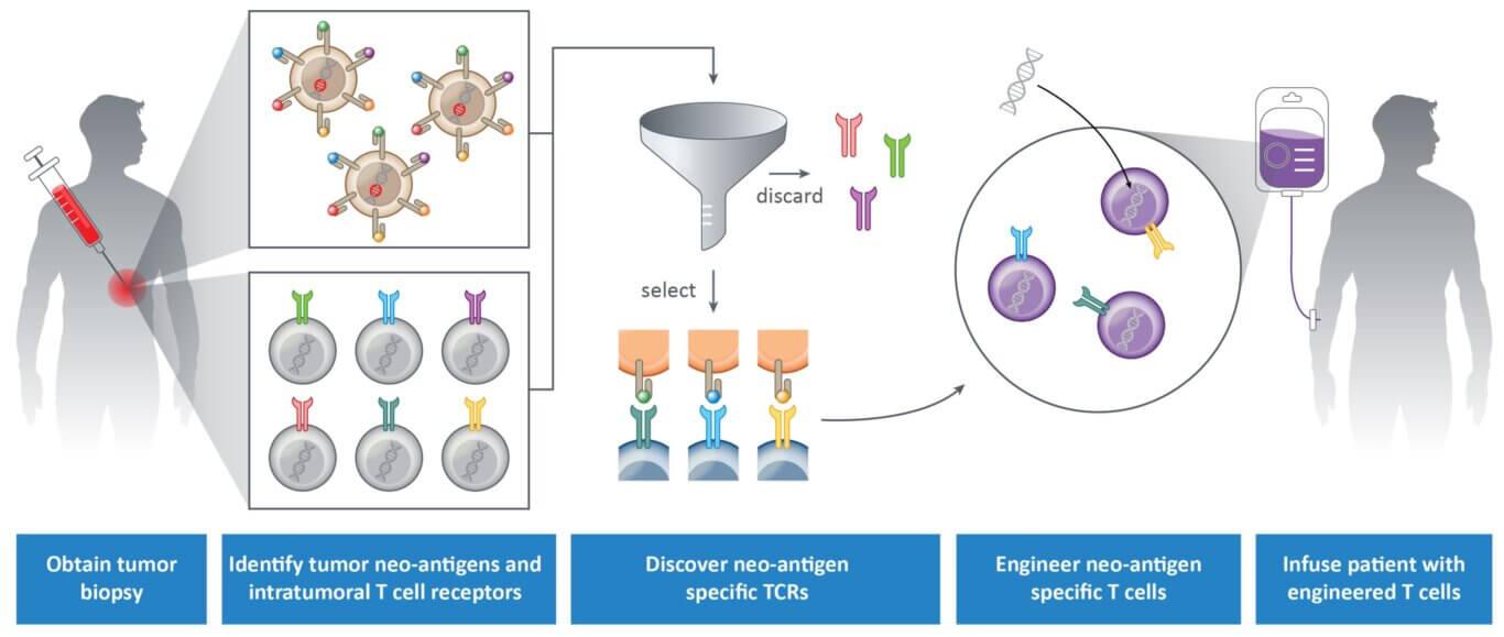 biopsy process
